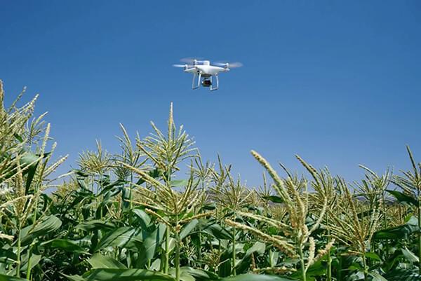 dron za poljoprivredu primjena